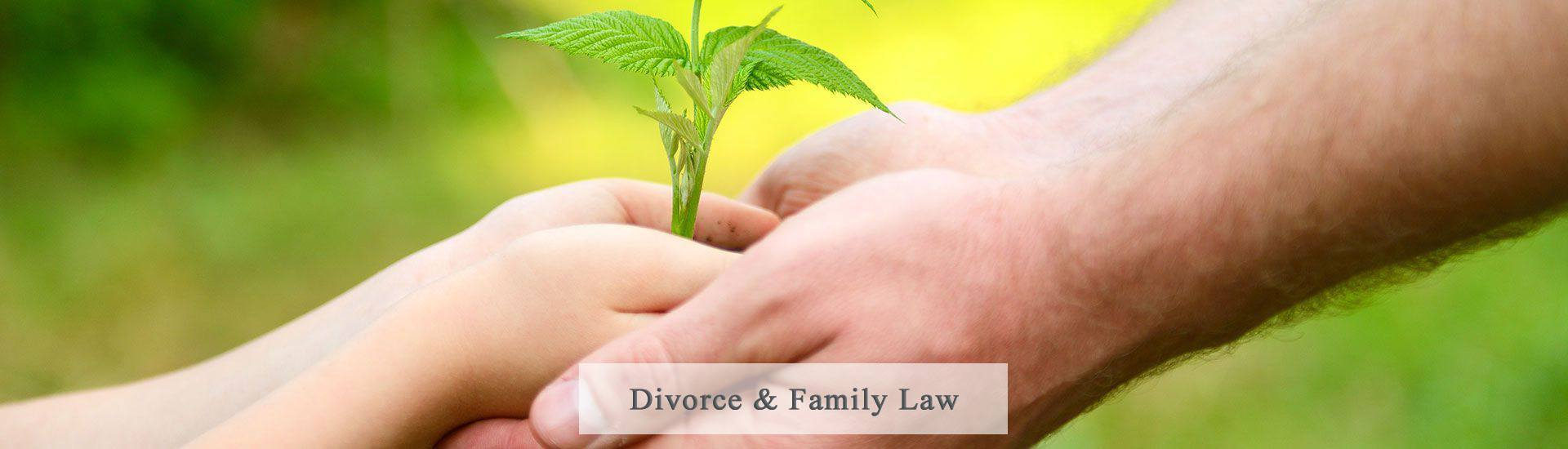 Divorce Lawyer in West Palm Beach Florida